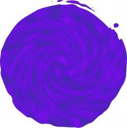 Blue Purple Chameleon_compressed