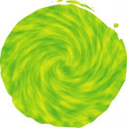 Green Gold Chameleon_compressed