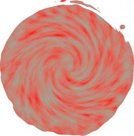 Red White Chameleon_compressed